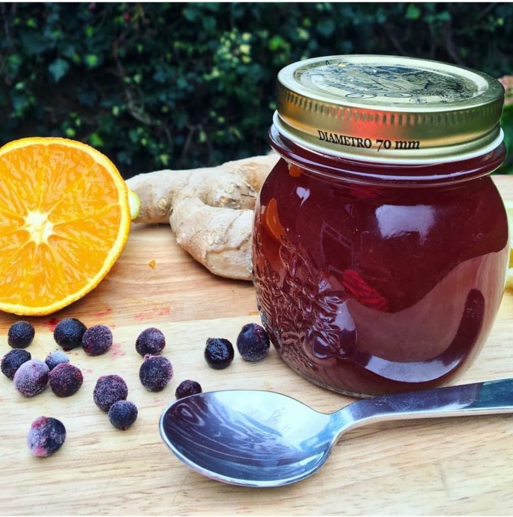 Back to School & Germs. Elderberry to the rescue ...